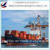 Começ o transporte de frete da carga do mar das taxas do transporte de China a no mundo inteiro