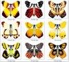 Kunstmatige Vliegende Vlinder (FT8003)
