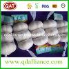 Nenhum OGM com alho branco normal com certificado ISO9001