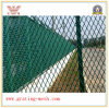 Competitive Price를 가진 확장된 Metal /Fence Mesh