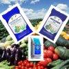 Fertilizante compuesto --- Alga marina microbiana (NPK 10-5-10)