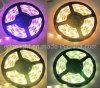 Striscia del LED (WFLS-12V-3W10-RGB-5050T-5000-300)