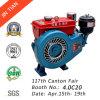 De enige Dieselmotor van de Cilinder (Z170F)