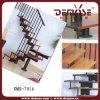 Interiores rieles de acero Escaleras (DMS-7016)