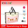 Pp imperméables à l'eau Woven Tote Travel Bag avec Zipper Lock (CB220)