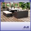 Tabela de jantar de Polywood do jardim do Rattan do PE - ao ar livre/pátio/mobília de vime (J382-A)