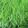 Seguro e Durable Natural Green Popular Grass/Synthetic Grass para Soccer Football