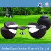 Jogo global de vime do lazer da mobília ao ar livre impermeável