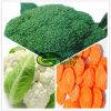 Vegetal misturado congelado IQF da mistura da alta qualidade 3