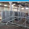 Vee van de Melkveehouderij van de apparatuur het Fabriek Gemaakte ZelfHeadlock voor het Voeden