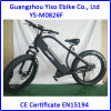 bici elettrica grassa di 750W 48V/20ah
