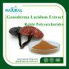 El fabricante proporciona al mejor Ganoderma Lucidum Extract