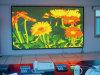 Affichage vidéo de publicité d'intérieur de RoHS Digital P4 DEL de la CE de ccc