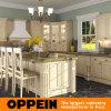 De in het groot Italiaanse Keukenkasten van de Deur (OP12-L055)