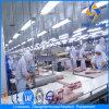 Schwein Slaughter Equipment mit Installation Materials