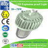 Atex/Ce/RoHSの耐圧防爆LED Canopy Light