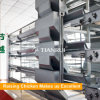 Tianrui heißer verkaufenh Typ automatisches Batterie-Schicht-Geflügel sperren ein