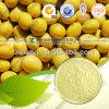 栄養の補足の大豆のエキス40%の大豆のイソフラボン