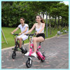 折るグリーン電力の電気バイクのブラシレス250Wか350W電気自転車