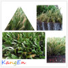 Landscaping (MSTT-30)のための高品質Tencate Thiolon Artificial Grass