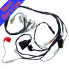 Wireharness para Motorcycle