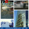 Tinted Float Glass for Windows Glass
