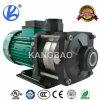 Motor eléctrico trifásico del hierro fundido (CE, UL, RoHS aprobado)