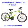 Elektrisches Fahrrad LCD-Currie für Mann-Reiten mit En15194