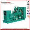 Ccec angeschaltenes geöffnetes Set des Generator-480kw für Vieh-Bauernhof
