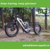 El último triciclo eléctrico vendedor caliente del neumático gordo para el europeo