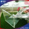 Nach Maß Größen-Großverkauf-Acrylpapierserviette-Kasten