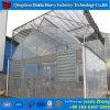 中国の大きい温室の製造業者からのプラスチックアーチの温室