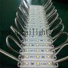 indicatori luminosi per illuminazione del contrassegno, Ce RoHS 3LEDs SMD3528 di 12V LED