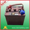Батарея цикла Cbb оптовая 6V 225ah T105 глубокая для тележки гольфа