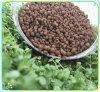 18-46-0 fertilizante orgánico del fosfato del diamonio en el precio bajo