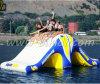 Brinquedo inflável Multi-Function do parque da água da corrediça do Totter da volta do Aqua, balancim da volta para os adultos D3056