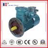 Motor elétrico da C.A. com sistema de movimentação variável da freqüência