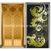 Porta decorativa revestida do elevador do aço inoxidável da cor de PVD