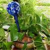 Globi Aqua/dell'acqua, lampadine di vetro di innaffiatura di auto, sistema di innaffiatura del giardino