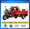 Motociclo pieno del carico delle rotelle di fortuna 3 di Fl150zh-Eb