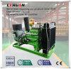 Bio generador del gas de metano del gas de la fábrica para el estiércol y el almidón