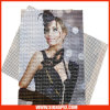Media solvibili/maglia (1099) del getto di inchiostro della bandiera della flessione del PVC di alta qualità