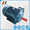 Ye2-250m-2 3-Phase Induction AC Electric Motor