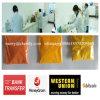 Очищенность Yellow-Orange Isotretinoin USP высокая для строгого угорь CAS 4759-48-2