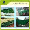 hoja incombustible impermeable resistente del encerado del PVC 22oz
