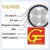 AAAC Conducteur XLPE Isolation Sta Câble d'alliage d'aluminium blindé Yjlhv22