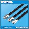 Le PVC a couvert le noir de serre-câble en métal
