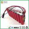 Li van Shenzhen 13000mAh 12V op Batterij