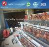 Jaula del pollo de la colocación de huevo de la batería de la granja avícola para la venta