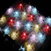 Koord van de veelkleurige LEIDENE de Aangedreven LEIDENE van de Tuin van Kerstmis van de Vorm van de Zeester van het LEIDENE Fee Lichte Waterdichte Openlucht Decoratieve Lamp van de Verlichting